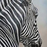 Zebra Look Poster