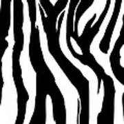 Zebra Print 001 Poster by Kenneth Feliciano