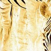 Zebra Up Closer Poster