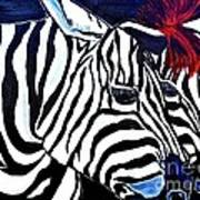 Zebras On A Blue Night Poster