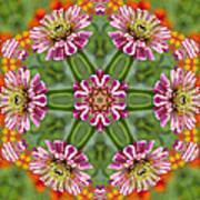 Zinging Zinnia Kaleidoscope Poster
