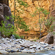 Zion Narrows Poster