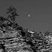 Zion National Park And Moon In Black And White Poster