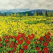 Zone Des Fleur Poster