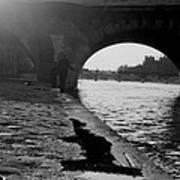 Paris Shadow Fisherman 1964 Poster