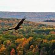 003 Letchworth State Park Series  Poster
