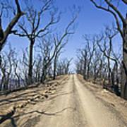 A Dirt Road Runs Along A Mountain Top Poster