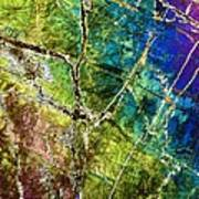 Amphibole Mineral, Light Micrograph Poster