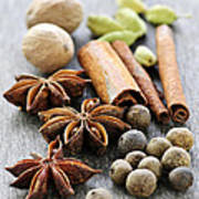 Assorted Spices Poster by Elena Elisseeva