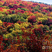 Autumn Along The Highland Scenic Highway Poster