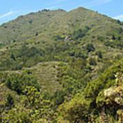 Beautiful Mount Tamalpais Poster