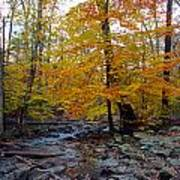 Big Hunting Creek Down Stream From Cunningham Falls Poster