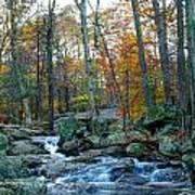 Big Hunting Creek Upstream From Cunningham Falls Poster