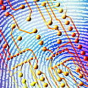 Biometric Fingerprint Scan Poster by Pasieka