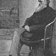 Charles Robert Darwin, English Poster