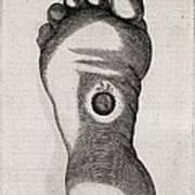 Christ's Stigmata, 17th Century Poster