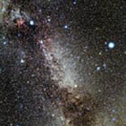 Cygnus And Lyra Constellations Poster by Eckhard Slawik