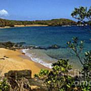 El Convento Beach Poster