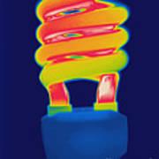 Energy Efficient Fluorescent Light Poster