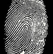 Enlarged Fingerprint Poster