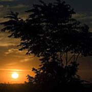 Evening Sunset  Poster
