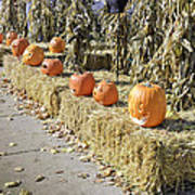Fall  Halloween On Tillson Street Poster
