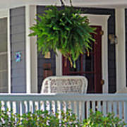 Fern On Front Porch Poster