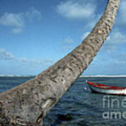 Fishing Boat And Palm Trunk Poster