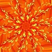 Floral Sunrise Poster