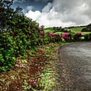 Flores Island - Azores Poster