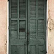 French Quarter Doors Poster