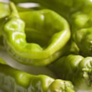 Fresh Long Green Hot Peppers Poster