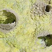 Fumarole Deposits In The Dallol Poster