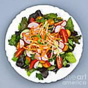 Garden Salad Poster by Elena Elisseeva
