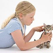 Girl Grooming Kitten Poster