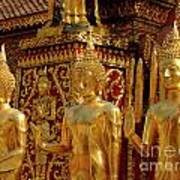 Golden Buddhas Poster