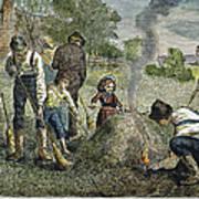 Grasshopper Plague, 1875 Poster