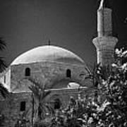 Hala Sultan Tekke Mosque Larnaca Republic Of Cyprus  Poster