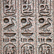 Hieroglyphs On Ancient Carving Poster by Jane Rix