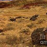 John Day Painted Hills Poster