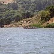 Lake Shabot Poster