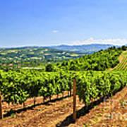 Landscape With Vineyard Poster