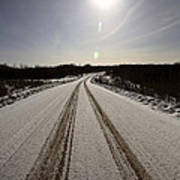 Logging Road In Winter Poster
