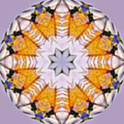 Mandala Of Love Poster