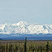 Mt Hayes Alaska May 2007 Poster