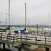 Newport Bay And Balboa Island Poster