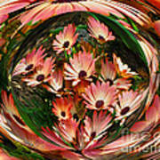 Pink African Daisies Poster