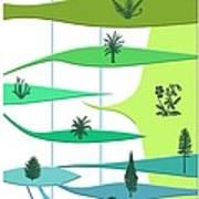 Plant Evolution, Diagram Poster by Gary Hincks