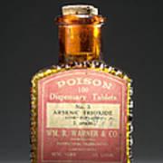 Poison, Circa 1900 Poster