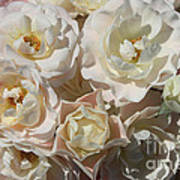 Romantic White Roses Poster